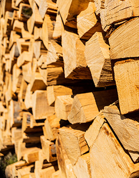 Wood Cluster